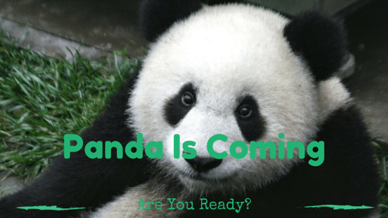 Panda Update Is Coming